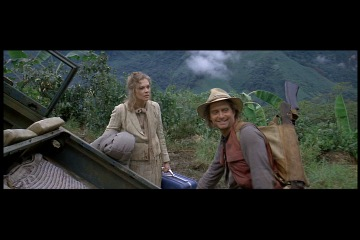 joan wilder romancing the stone